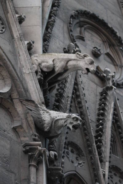 Photograph - Ram And Eagle Griffon Notre Dame by Christopher Kirby