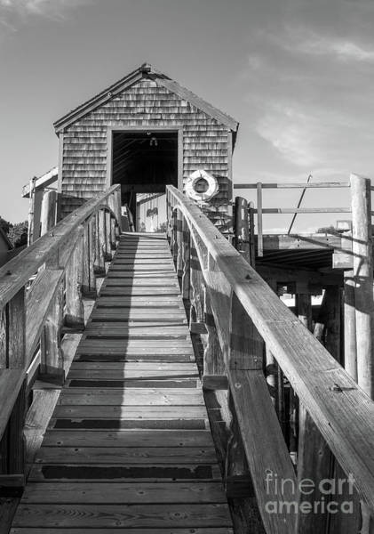 Photograph - Ramp And Shed, Rockport Harbor, Maine #80490-bw by John Bald