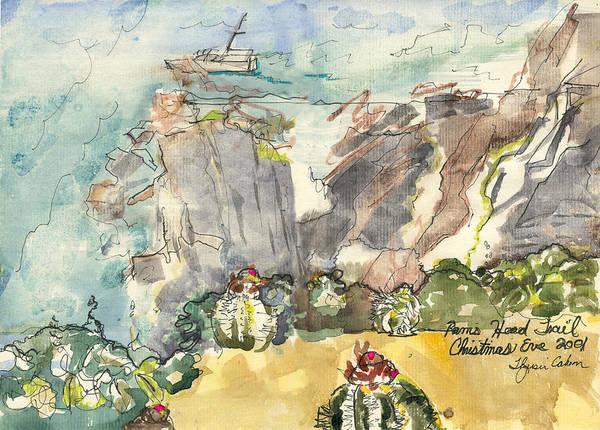 Us Virgin Islands Painting - Rams Head by Thyrsie Cahoon
