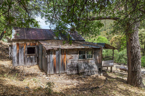 Photograph - Ramsey Canyon Cabin by Lon Dittrick