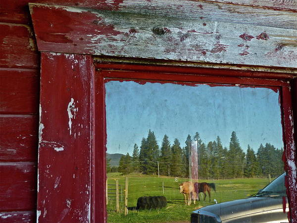 Photograph - Ranch Reflection by Diana Hatcher