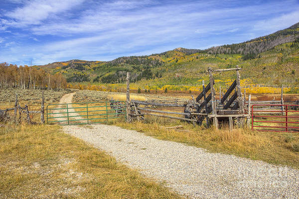 Photograph - Ranch Road by Spencer Baugh
