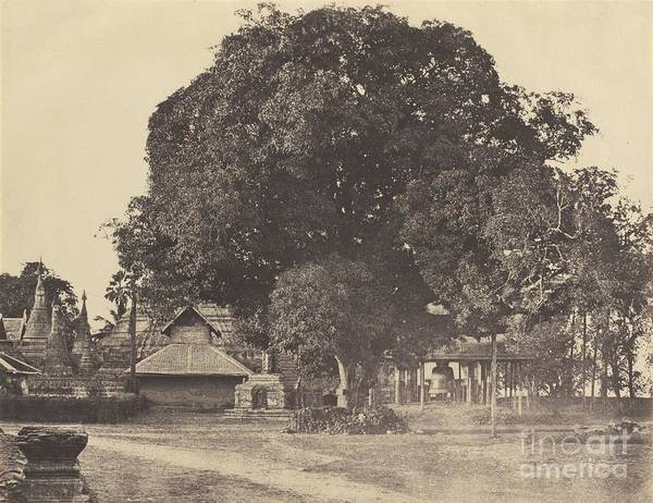 Wall Art - Photograph - Rangoon: Great Bell Of The [shwe Dagon] Pagoda by Linnaeus Tripe