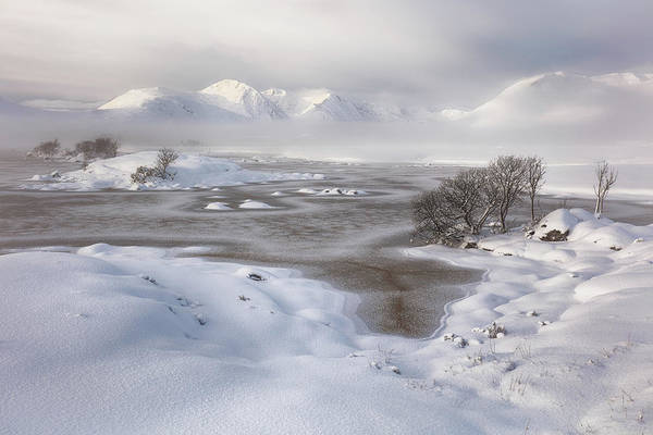 Wall Art - Photograph -  Rannoch Moor Winter by Grant Glendinning