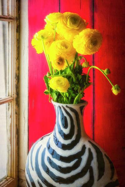 Ranunculus Photograph - Ranunculus In Vase In Window by Garry Gay