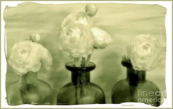 Wall Art - Photograph - Ranunculus Still Life Bottles by Marsha Heiken