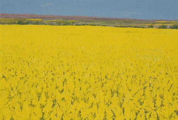 Golden Bloom Painting - Rape Field by Alan Byrne
