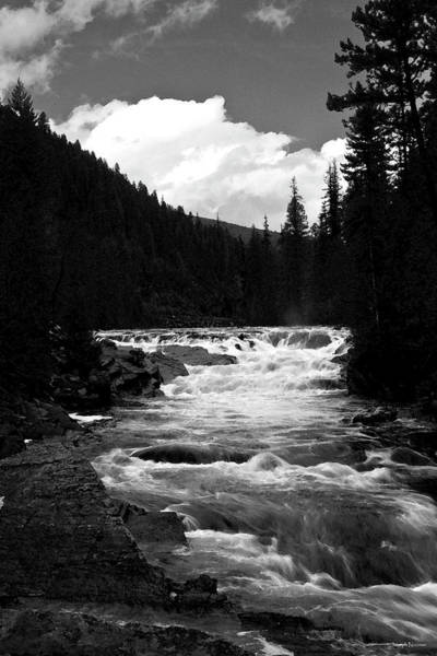 Photograph - Rapid Flows In Gray by Joseph Noonan