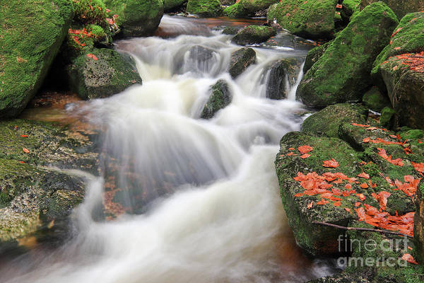 Wall Art - Photograph - Rapids On Jedlova Creek, Jizera Mountains,  Czech Republic by Michal Boubin