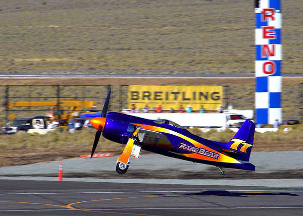 Photograph - Rare Bear Take-off Sunday's Unlimited Gold Race by John King