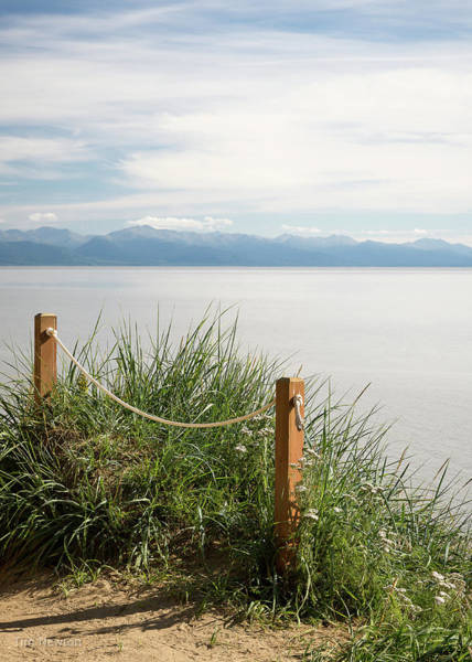 Photograph - Rare Summer Day by Tim Newton