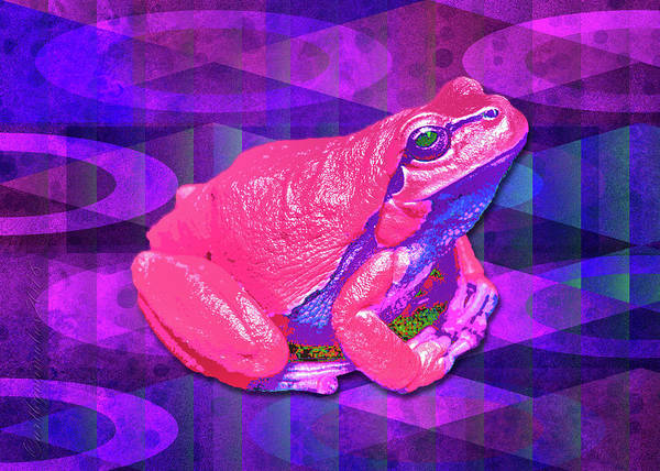 Digital Art - Raspberry Frog by Mimulux patricia No