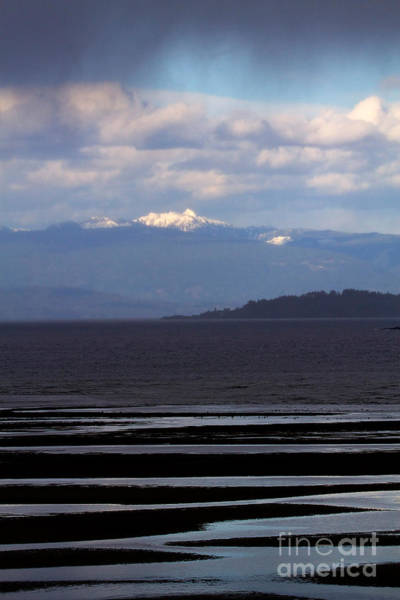 Wall Art - Photograph - Rathtrevor Beach On Vancouver Island In British Columbia by Louise Heusinkveld