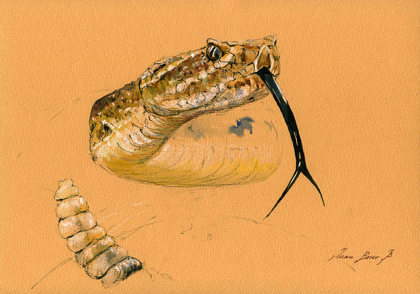 Reptile Painting - Rattlesnake Painting by Juan  Bosco