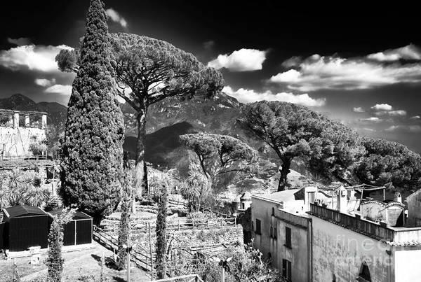 Wall Art - Photograph - Ravello Nature by John Rizzuto