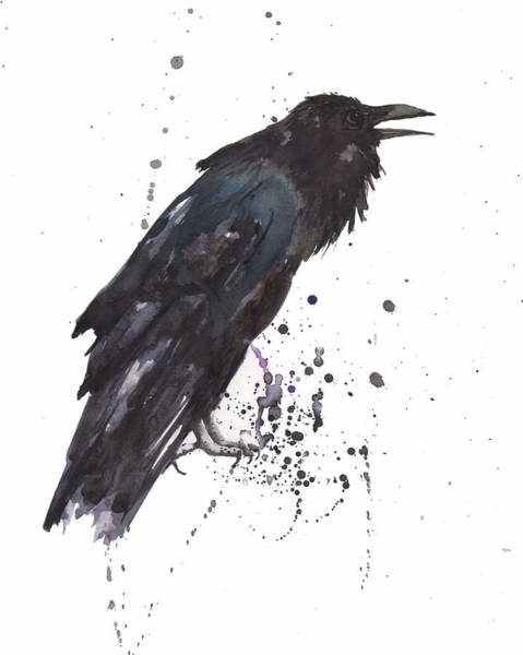 Bird Painting - Raven  Black Bird Gothic Art by Alison Fennell