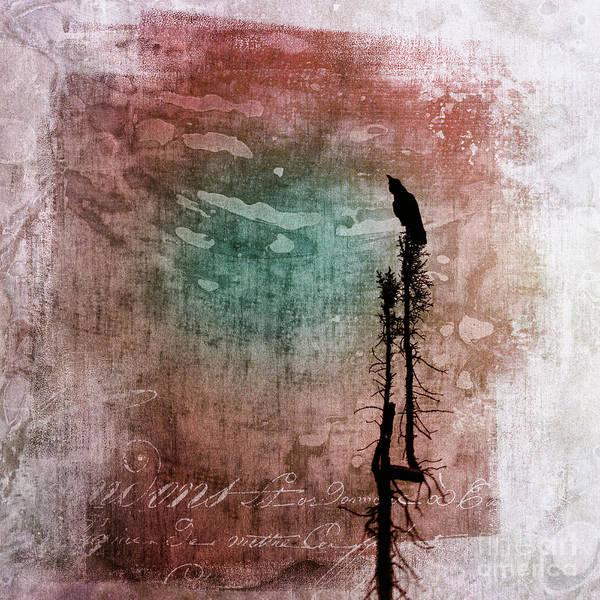 Wall Art - Photograph - Raven Call 2 by Priska Wettstein