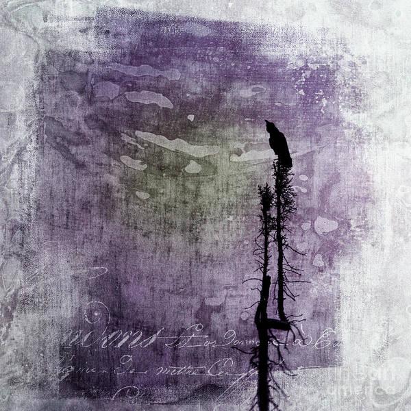 Wall Art - Photograph - Raven Call 3 by Priska Wettstein