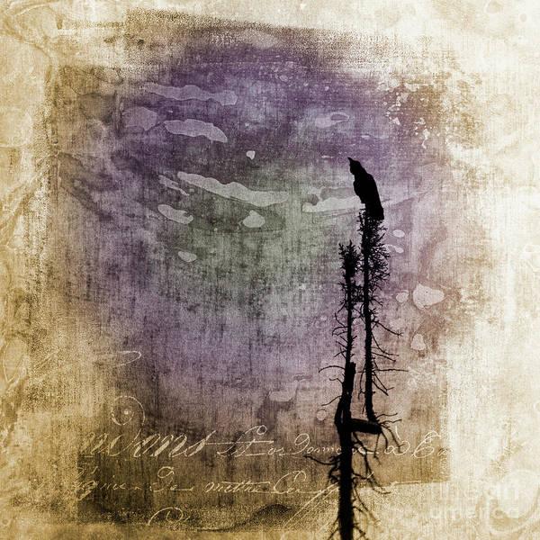 Wall Art - Photograph - Raven Call 4 by Priska Wettstein