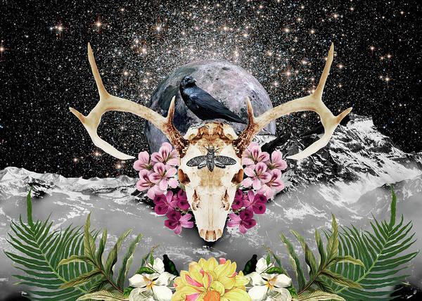 Deer Skull Digital Art - Raven  by Gloria Sanchez
