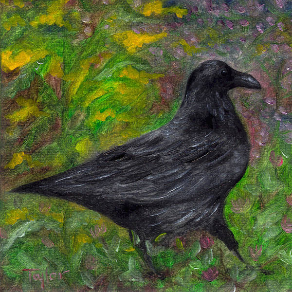 Raven In Goldenrod Art Print