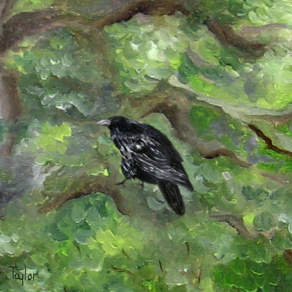 Raven In The Om Tree Art Print