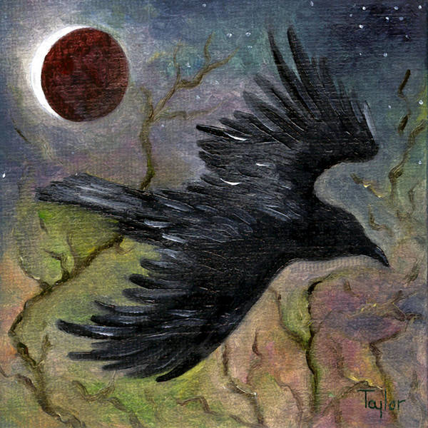 Raven In Twilight Art Print