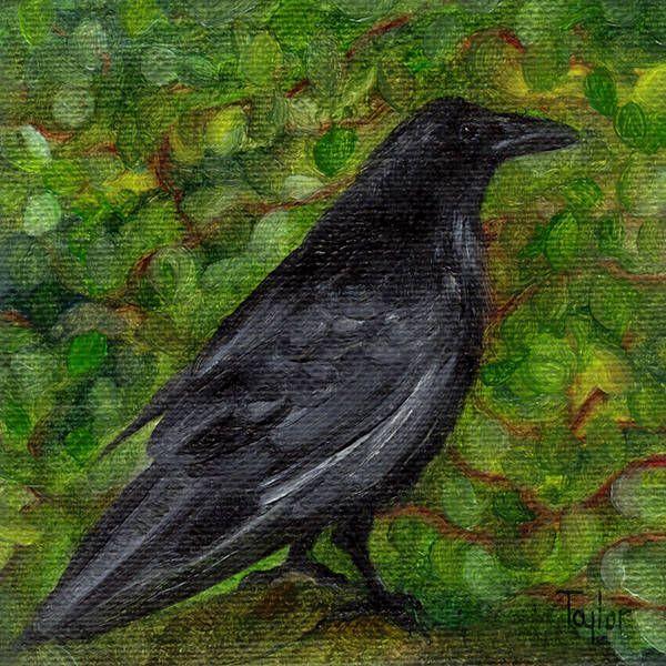 Raven In Wirevine Art Print