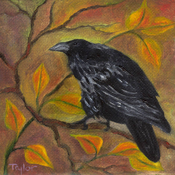 Raven On A Limb Art Print