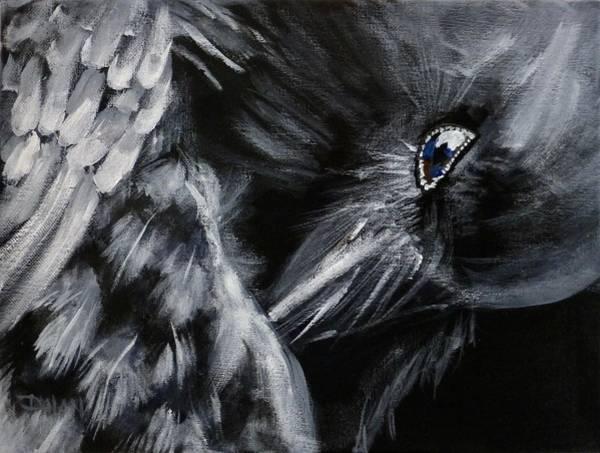 Raven Preening Art Print