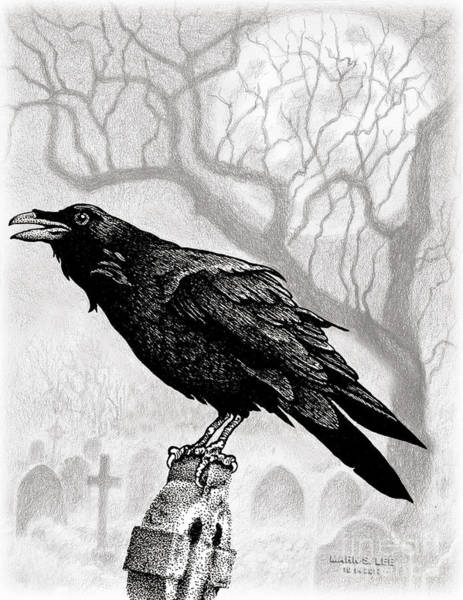 Gravestone Drawing - Raven's View by Mark S Lee