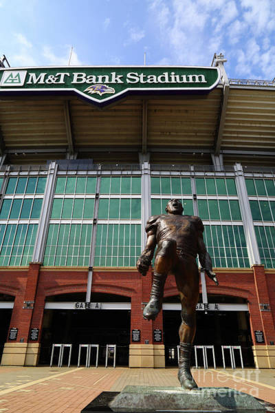Photograph - Ray Lewis Statue And Mt Bank Stadium Baltimore by James Brunker