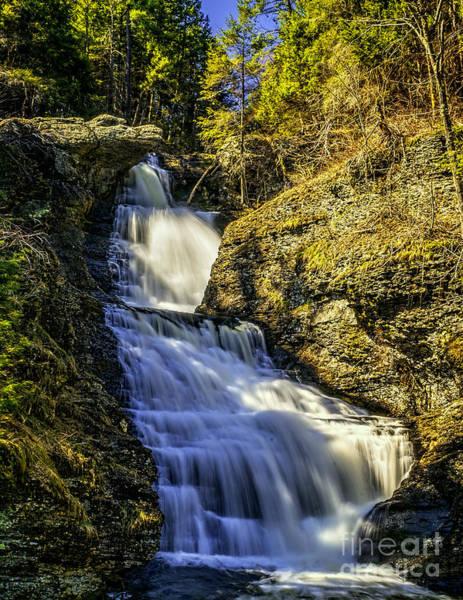 Photograph - Raymondskill Falls - Pa by Nick Zelinsky