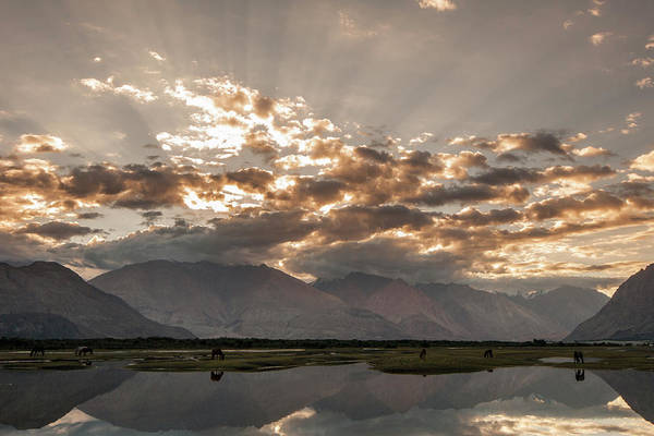 Photograph - Rays And Reflection, Hunder, 2006 by Hitendra SINKAR