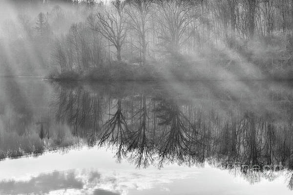 Photograph - Rays And Reflections by Thomas R Fletcher