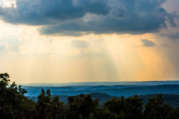 Photograph - Rays Of Nature by Parker Cunningham