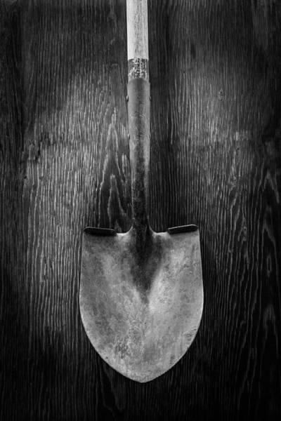 Shovel Photograph - Razorback Shovel by YoPedro