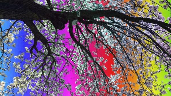 Painting - Reaching The Rainbow by Christine Paris