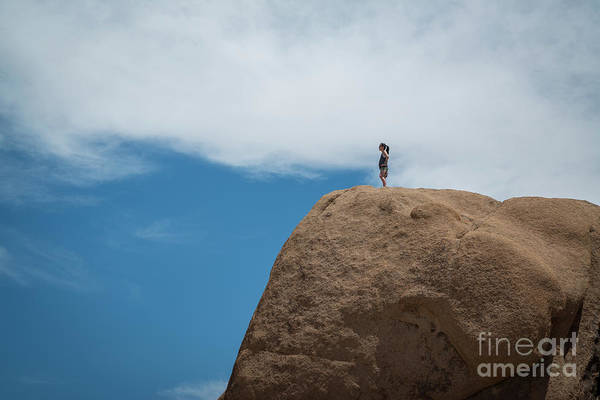 Tree Climbing Photograph - Reaching The Top Of The Rock by Michael Ver Sprill