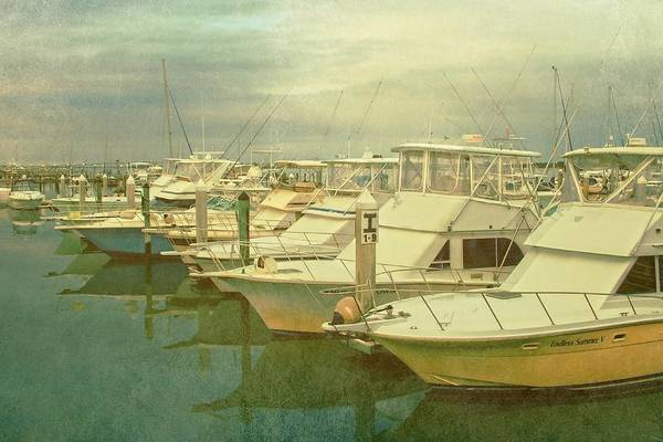 Photograph - Ready For Fishing  by Alice Gipson
