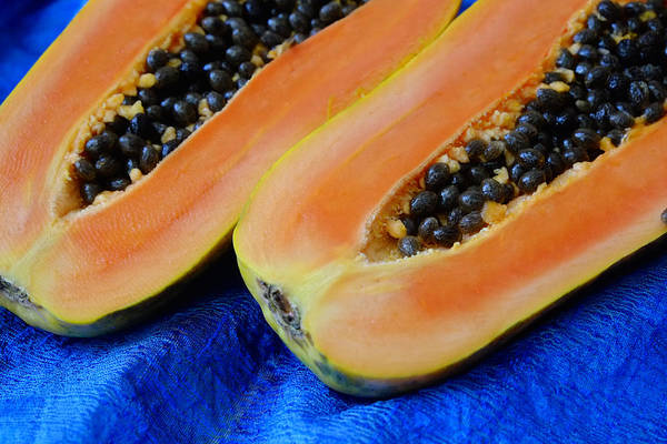 Photograph - Ready Papaya by August Timmermans