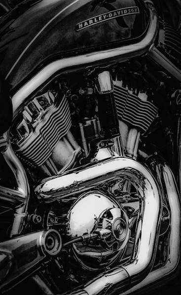 Photograph - Ready To Fly Black And White 5482 Bw_2 by Steven Ward