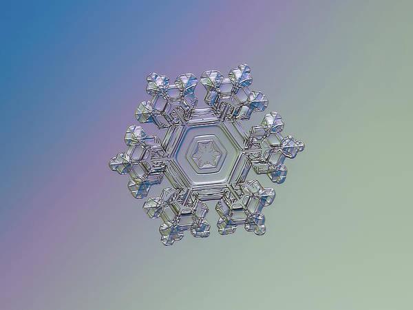 Photograph - Real Snowflake - 05-feb-2018 - 1 Alt by Alexey Kljatov