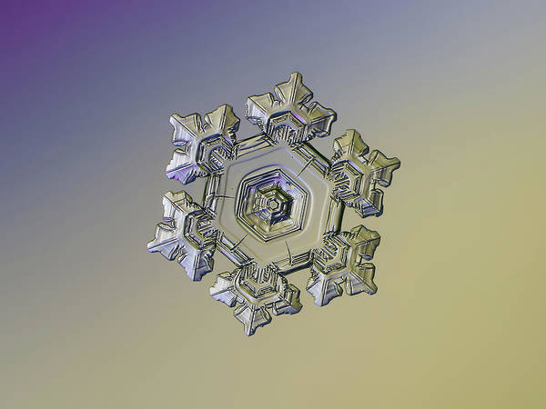 Photograph - Real Snowflake - 05-feb-2018 - 10 Alt by Alexey Kljatov