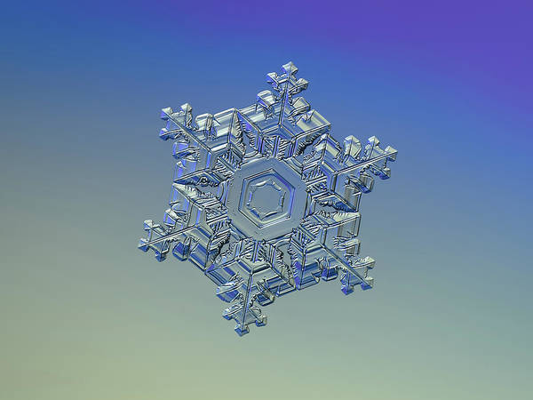 Photograph - Real Snowflake - 05-feb-2018 - 11 Alt by Alexey Kljatov