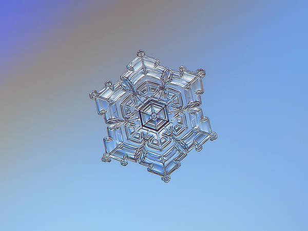Photograph - Real Snowflake - 05-feb-2018 - 2 by Alexey Kljatov