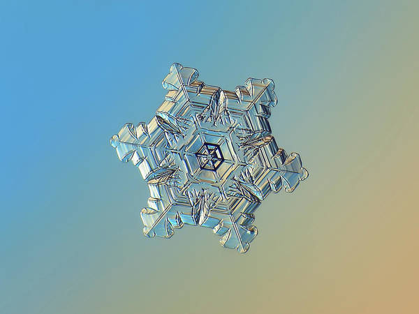 Photograph - Real Snowflake - 05-feb-2018 - 3 Alt by Alexey Kljatov