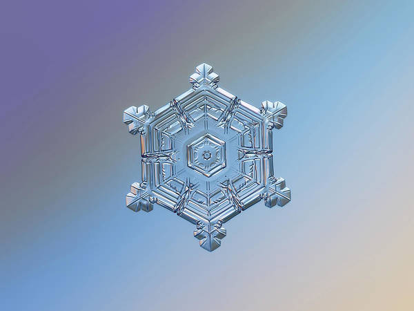 Photograph - Real Snowflake - 05-feb-2018 - 4 by Alexey Kljatov