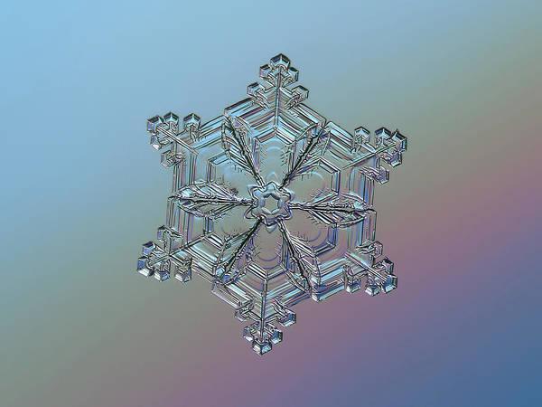 Photograph - Real Snowflake - 05-feb-2018 - 8 by Alexey Kljatov
