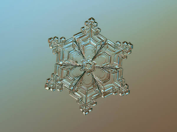 Photograph - Real Snowflake - 05-feb-2018 - 8 Alt by Alexey Kljatov